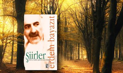 Kitap Yorumları, Erdem Bayazıt, Şiirler, İz Yayıncılık,Edebiyat, Şiir