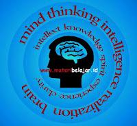 Pengertian Kecerdasan Logis-Matematis Menurut Para Ahli/ Pakar