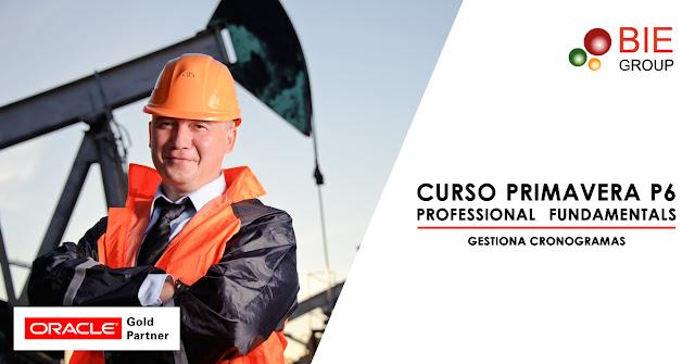 Curso Primavera P6 Professional Fundamentals