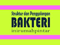 BAKTERI - Struktur, Penggolongan, Reproduksi, Peranan Bakteri