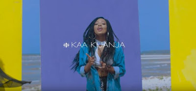 Feza Kessy Ft Nikki Wa Pili - Kaa Kijanja Video