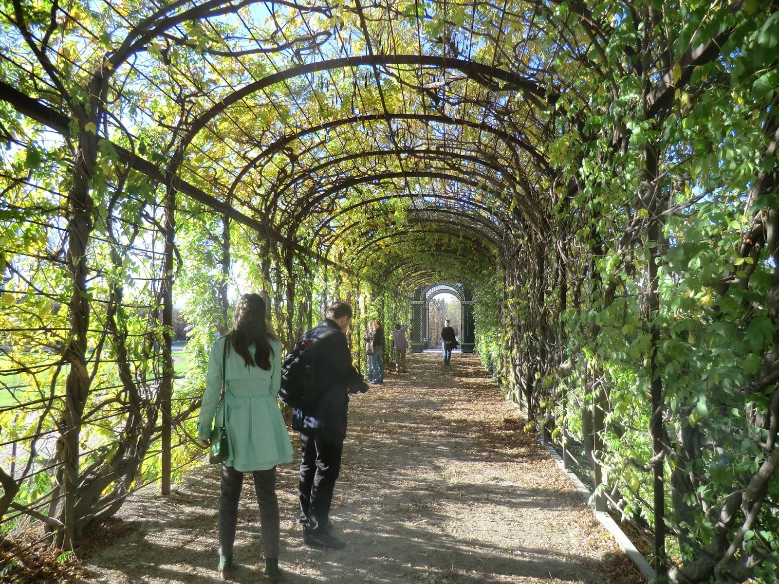Metido en jardines elementos del jard n p rgolas for Jardin las pergolas
