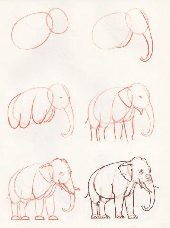 Рисунки карандашом для начинающих: животные