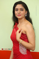 Actress Zahida Sam Latest Stills in Red Long Dress at Badragiri Movie Opening .COM 0057.JPG
