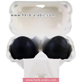 صابونة البيض الكوري بالفحم من هوليكا