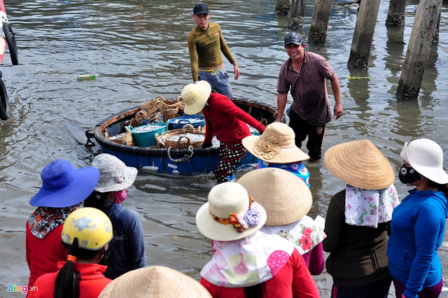 Ngư dân Quảng Ngãi trúng đậm cá cơm đầu năm