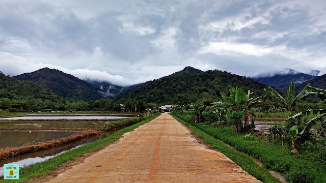 Bario (Kelabit Highlands), Borneo (Malasia)