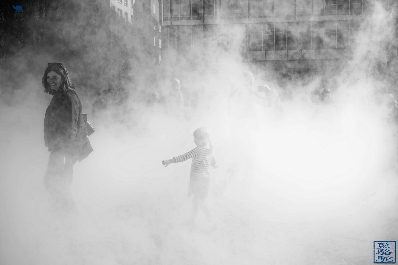 Le Chameau Bleu - Sculpture de brouillard