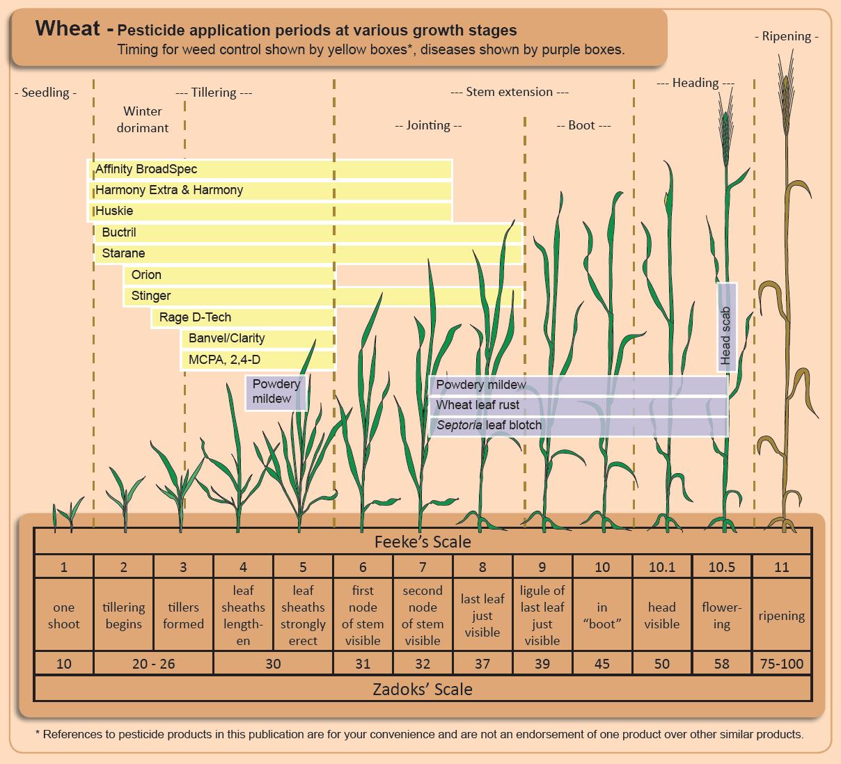 epub Advances in River Sediment Research