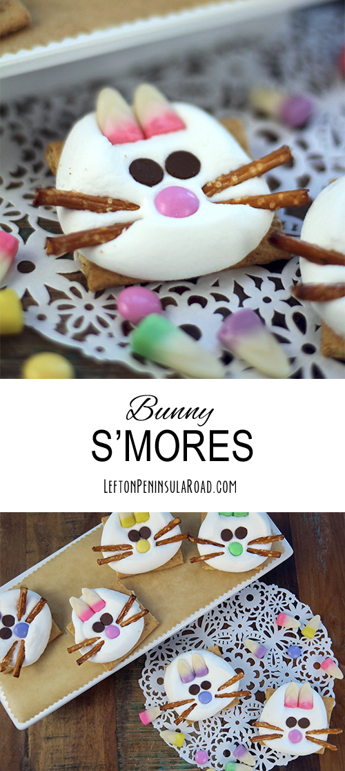Cute Bunny Faces Adorn Microwave S'mores