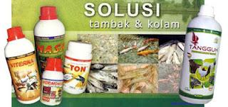 solusi tambak dan kolam, produk perikanan nasa