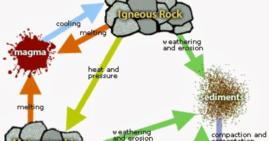 Wild Adventures The Amazing Rock Cycle