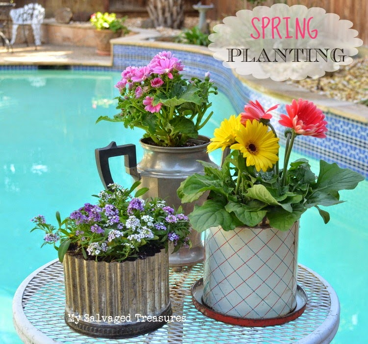spring planting container gardening