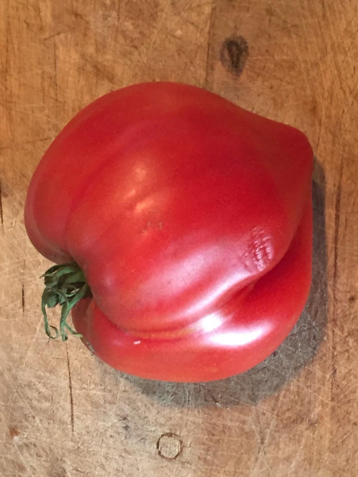 potager permaculture et petit levage l 39 arnaque des tomates coeur de boeuf. Black Bedroom Furniture Sets. Home Design Ideas
