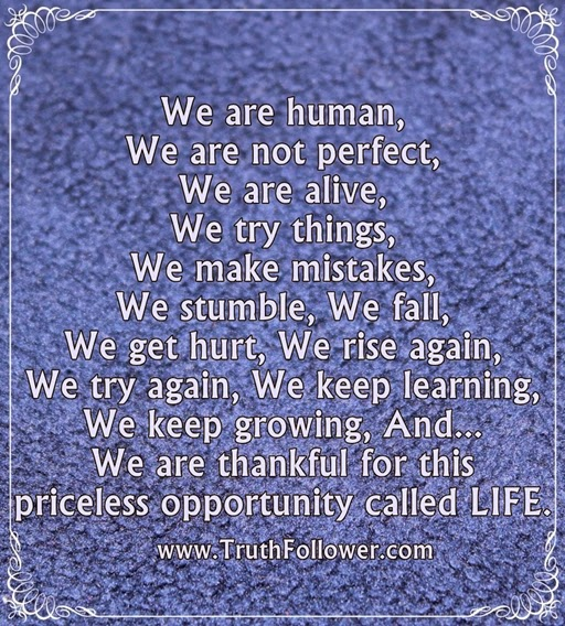 We Are Human We Are Not Perfect Humans Life Quotes