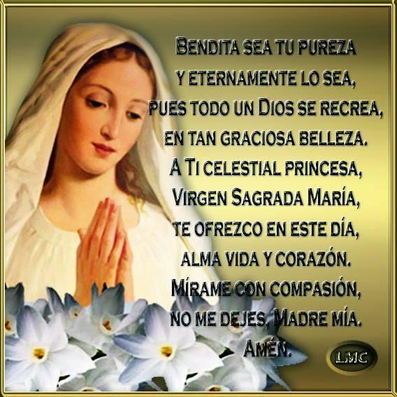 A Ti celestial princesa, Virgen Sagrada María, te ofrezco en este día, alma, vida y corazón.
