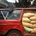 Photos: Nigeria Customs seize 37 vehicles loaded with imported rice, arrests 3 suspects