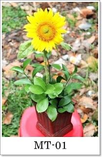 Rangkaian Bunga Matahari