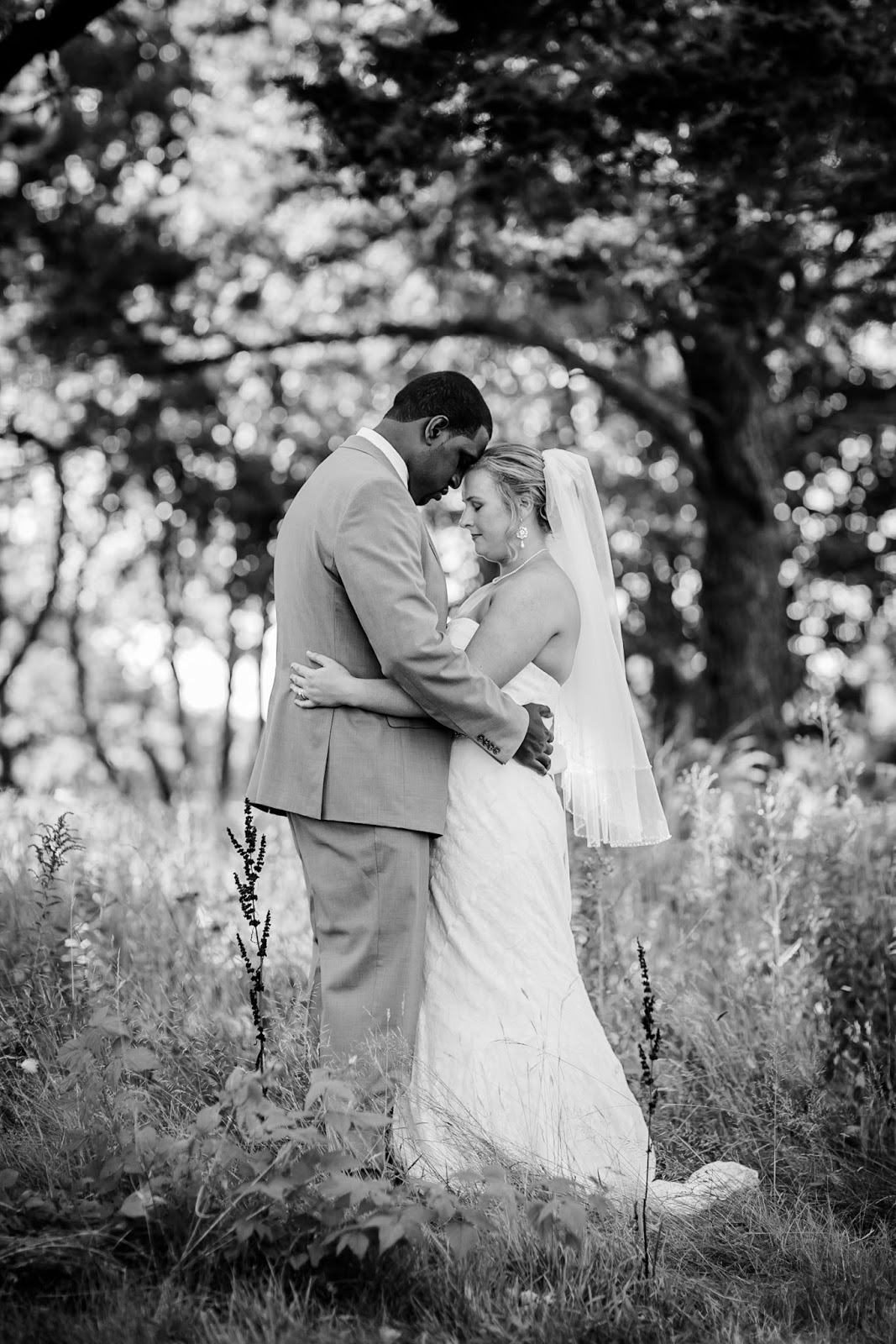 beautiful wedding photo ideas