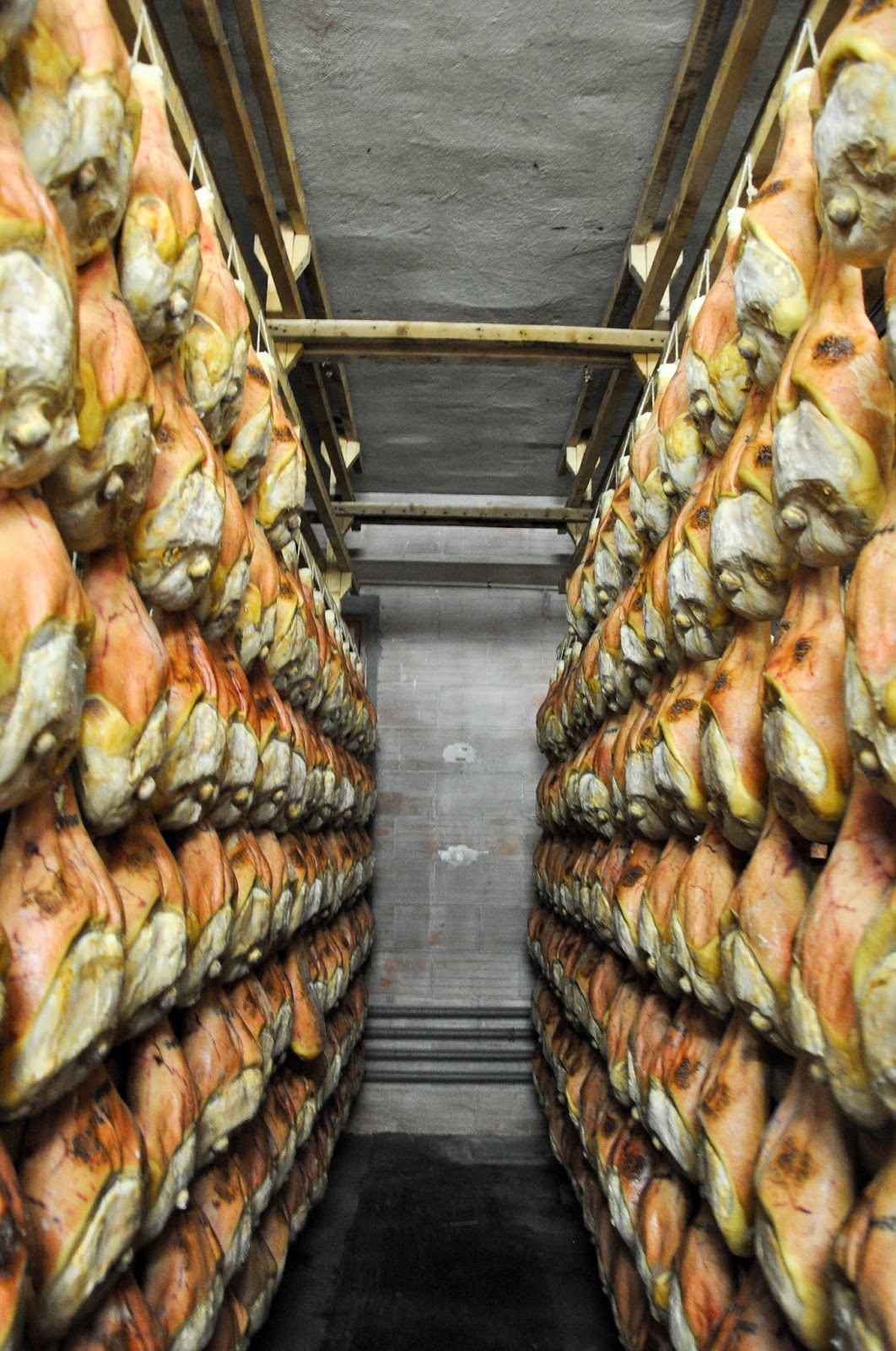 Prosciutto maturing for 18 to 24 months