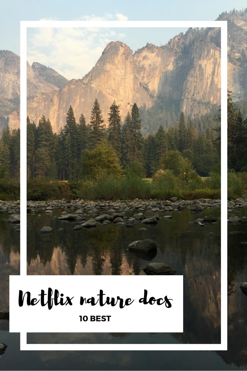 10 Best Nature Documentaries on Netflix