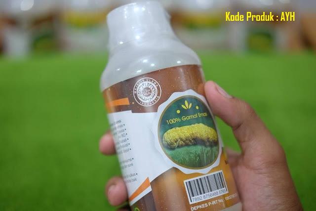 Obat Hematuria Herbal