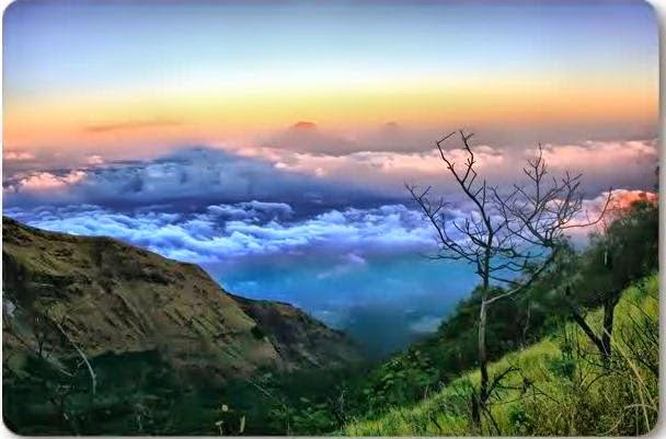akcayatour taman nasional gunung merbabu travel malang salatiga wisata