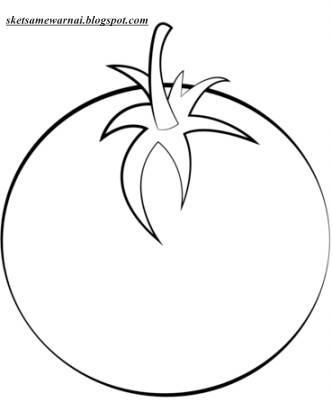 Sketsa Mewarnai Gambar Sayur Sayuran Sketsa Mewarnai