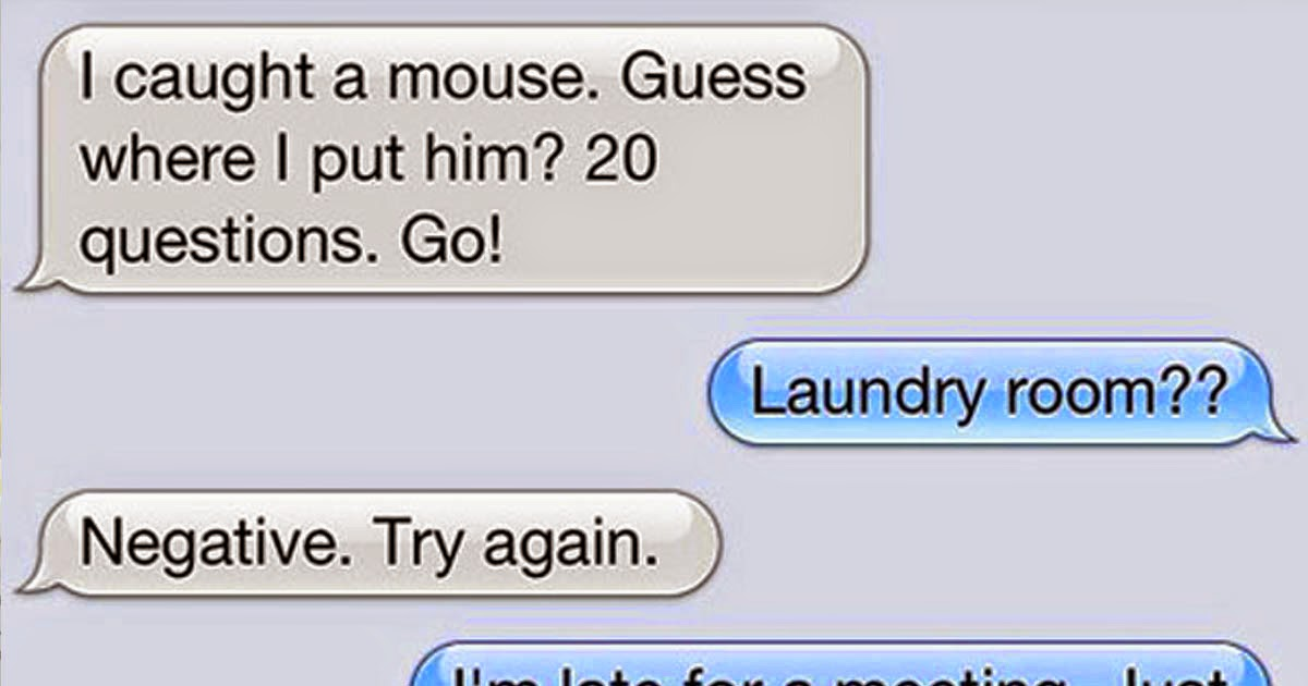 Flirty Quotes Wallpaper 15 Text Messages A Cat Would Send If Cats Could Actually Text