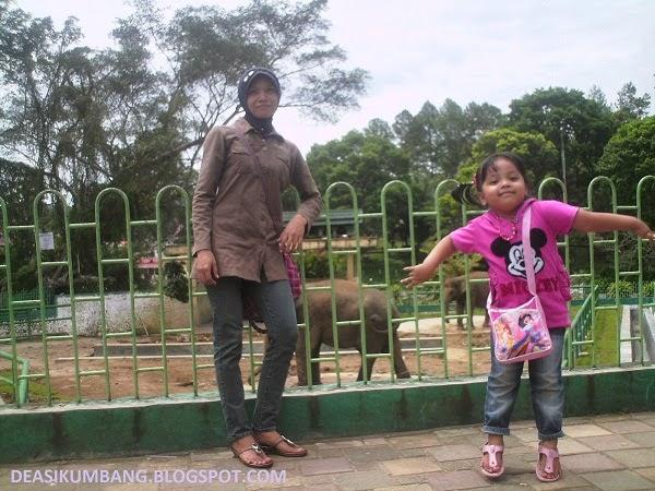 Keindahan Bukittinggi di Taman Margasatwa Dan Budaya Kinantan