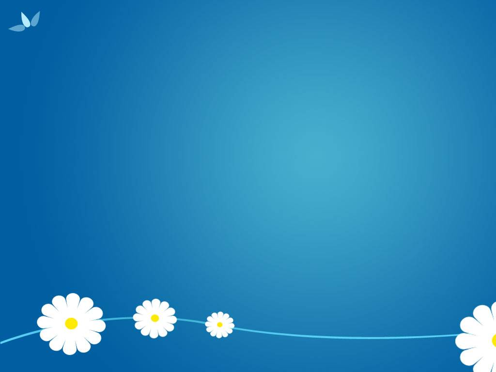 White daisies PPT background