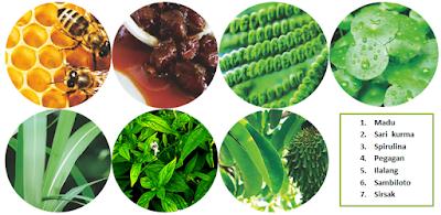 Herbal madu SJ - isman