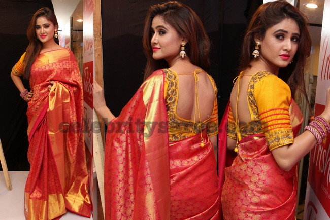 sony charista kanjeevaram saree saree blouse patterns