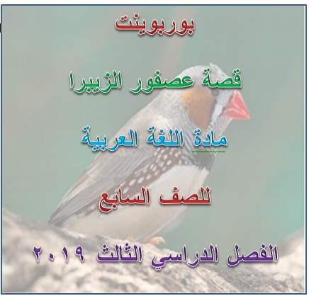 درس قصة عصفور الزيبرا لغة عربية للصف السابع فصل ثانى 2020- مناهج الامارات