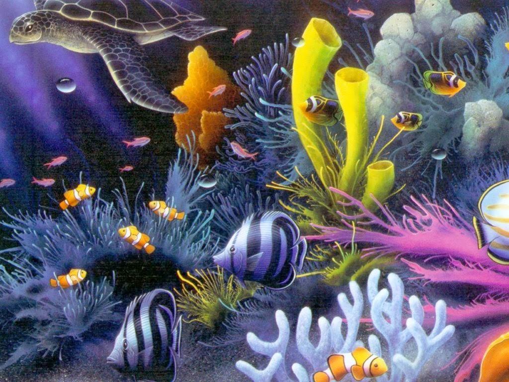 Free Fall Animal Wallpaper Aquatic Wallpapers Hd Wallpapers