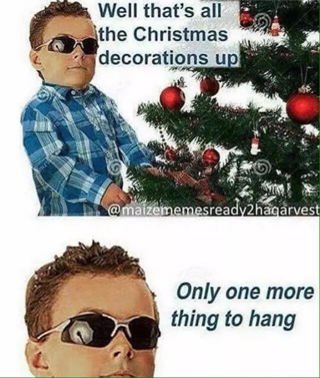 Well, that's all the Christmas decorations up meme