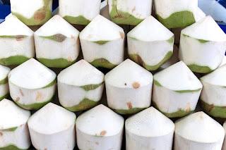 pengupasan kelapa thailand