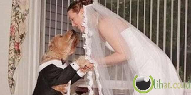Perempuan Togo menikahi anjingnya