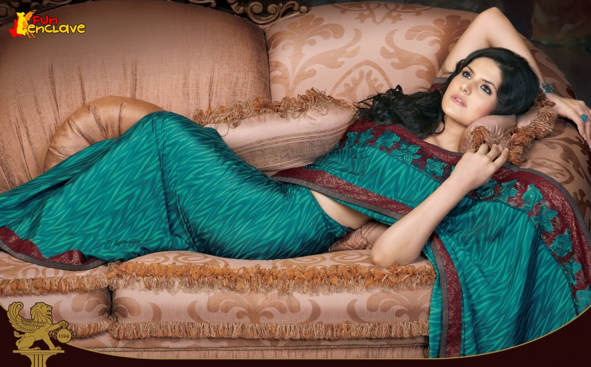 Bollywood Singers Hd Wallpapers Music Videos World Zarine Khan Saree Photoshoot Beautifull