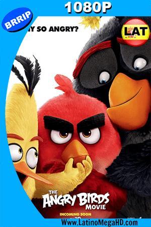 Angry Birds (2016) Latino HD 1080P ()