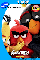 Angry Birds (2016) Latino HD 1080P - 2016