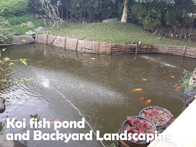 Fish pond and backyard landscaping idea