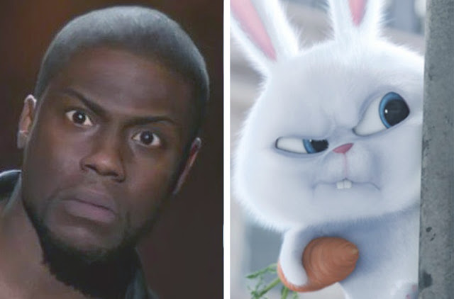 Kevin Hart - Snowball - The Secret Life of Pets