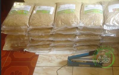 FOTO 3 : Kelompok Tani Cirebon, Jabar   Pembeli Benih Padi TRISAKTI 75 HST Panen   sebanyak 80 Kg atau 16 Bungkus