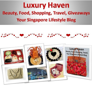 luxury haven singapore lifestyle blogger