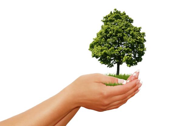 Desenvolvimento Sustentável: Utopia ou uma possibilidade real?