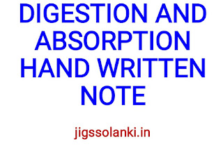 DIGESTION AND ABSORPTION HAND WRITTEN NOTE