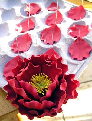 Pfingstrose, Blütenpaste
