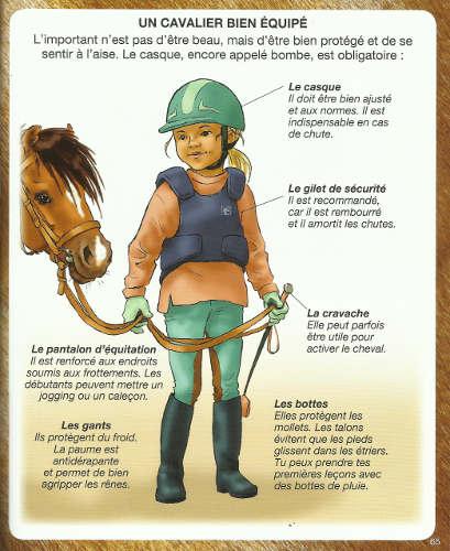 3c2dd90d22ef Crapouillotage  Equitation   L équipement du cavalier et du cheval