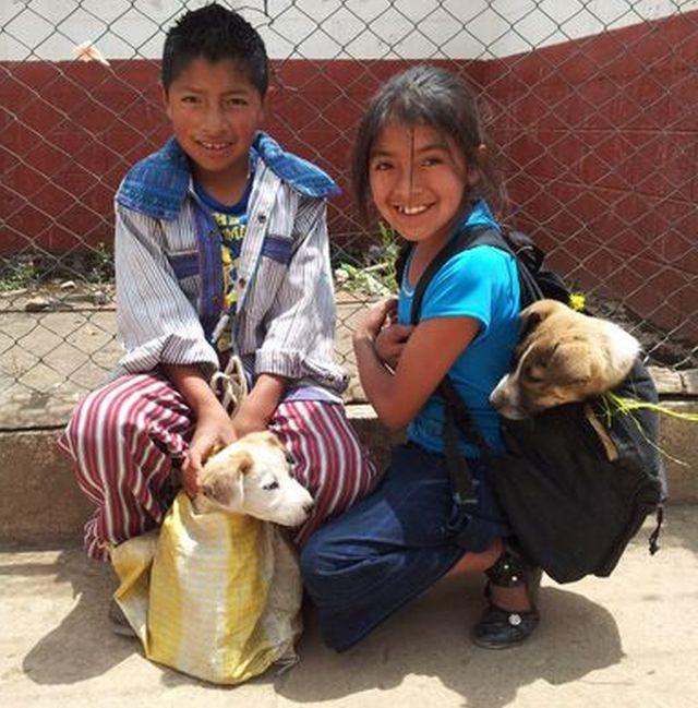 Alianza Global para Animales y Personas (GAAP)